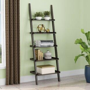 Latitude Run Updike Ladder Bookcase