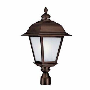 Capital Lighting Brookwood Outdoor 3-Light Lantern Head