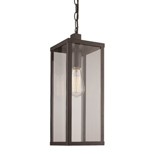 Mercury Row Pratt 1-Light Outdoor Hanging Lantern