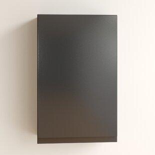 Tyntesfield 40 X 64cm Wall Mounted Cabinet By Brayden Studio