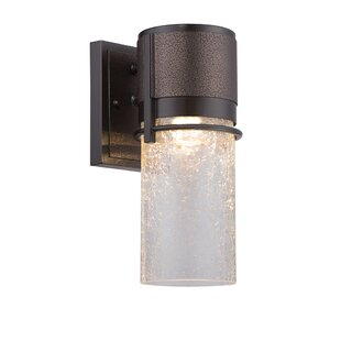 Wrought Studio Aramantha 1-Light Outdoor Sconce