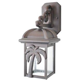 Penfield 1-Light Outdoor Wall Lantern