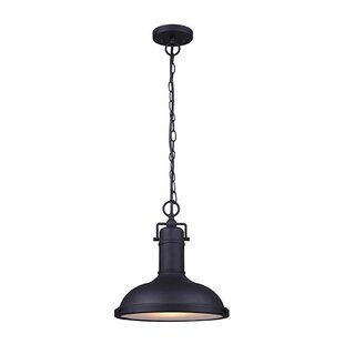 Gracie Oaks Barnfield 1-Light Outdoor Pendant
