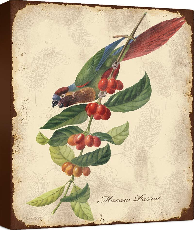 Vintage Botanical Hummingbird wall art Print no.2 wall decor birds wall decor