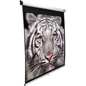 B Series Electric Projection Screen