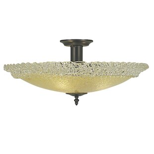 Reigate 3-Light Semi Flush Mount by Darby Home Co