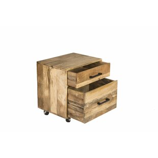 Beggs Office Storage 2 Drawers Accent Chest by Foundry Select