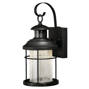 Alorton Dualux® 1-Light Outdoor Wall Lantern