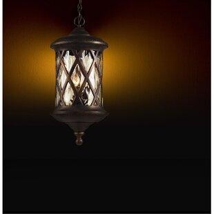 Whittington 3-Light Outdoor Hanging Lantern by Fleur De Lis Living