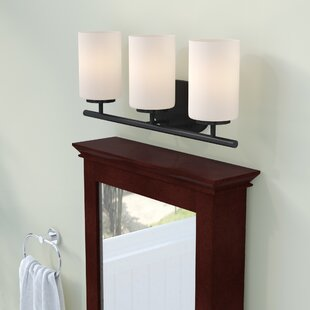 Darby Home Co Gaskell 3-Light Vanity Light