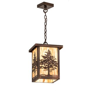 Loon Peak Wylie 1-Light Lantern Pendant