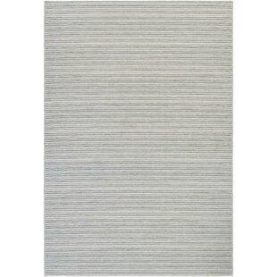 Napa Light Blue/Greyish Silver Indoor/Outdoor Area Rug by Trent Austin Design