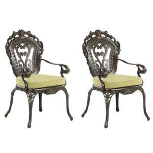 Fraire Stacking Garden Chair With Cushion (Set Of 2) By Astoria Grand