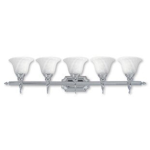 Red Barrel Studio Christiansburg 5-Light Vanity Light