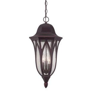Besaw 3-Light Hanging Lantern by Fleur De Lis Living