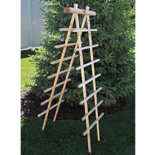 Gronomics Novelty Trellis