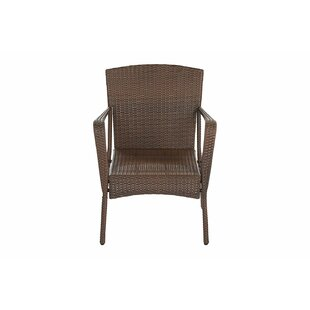 Rebbeca Outdoor Garden Patio Chair (Set of 2)