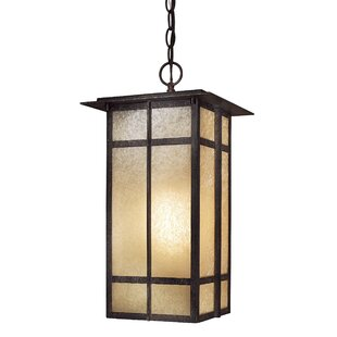 Bloomsbury Market Santa Clara 1-Light Outdoor Hanging Lantern