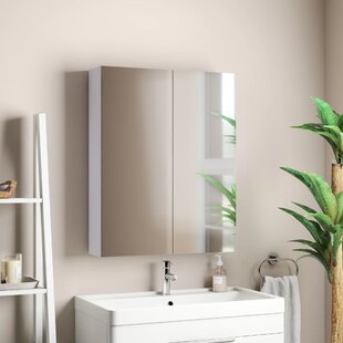 Classen 60 X 75cm Surface Mount Flat Mirror Cabinet By Rebrilliant