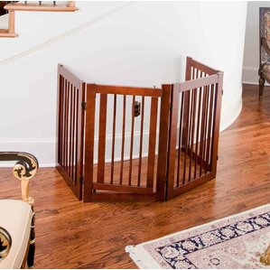 Indoor Dog Gates & Fences You\'ll Love | Wayfair
