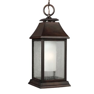 Reviews Hague 1-Light Outdoor Hanging Lantern By Darby Home Co