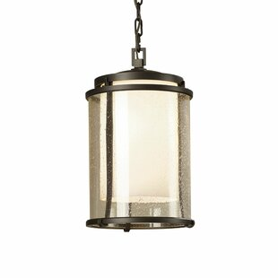 Hubbardton Forge Meridian 1-Light Outdoor Hanging Lantern