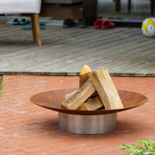 Raleigh Stainless Steel Charcoal/Wood Burning Fire Pit By Sol 72 Outdoor