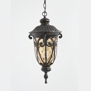 Massey 1-Light Outdoor Hanging Lantern