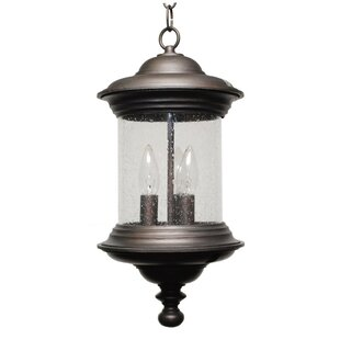 Best Choices Phillipstown 3-Light Outdoor Pendant By Alcott Hill