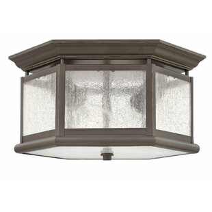 Darby Home Co Christiane 2-Light Outdoor Flush Mount
