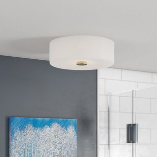 Orren Ellis Teddrick 2-Light Flush Mount