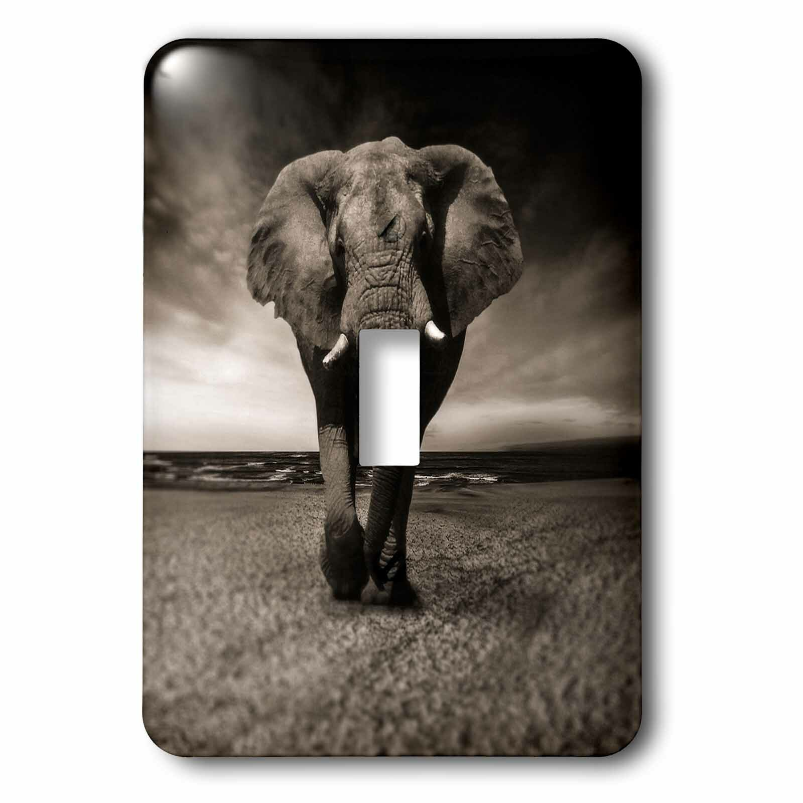 3drose African Wildlife Elephant 1 Gang Toggle Light Switch Wall Plate Wayfair