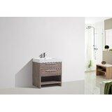 Waterloo 24 Single Bathroom Vanity by Orren Ellis