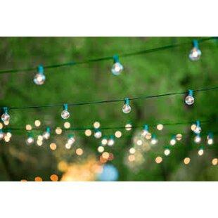 Aspen Brands 24-Light Globe String Lights