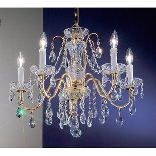 House of Hampton Letitia 5-Light Chain Shaded Candle Style Chandelier