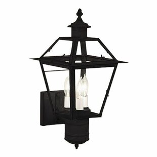 Breakwater Bay Harmony 3-Light Outdoor Sconce