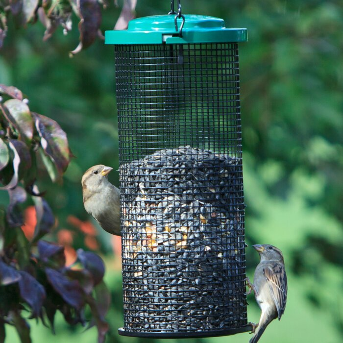 Sunflower Mesh Tube Bird Feeder