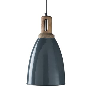 Veroniza 1-Light Dome Pendant by Gracie Oaks