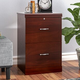 Charlton Home Haynes 2 Drawer Vertical File