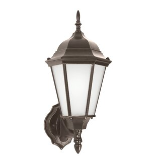 Read Reviews Anita 1-Light Outdoor Sconce By Alcott Hill