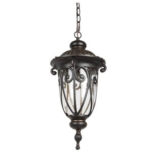 Inexpensive 1-Light LED Outdoor Hanging Lantern By Living District