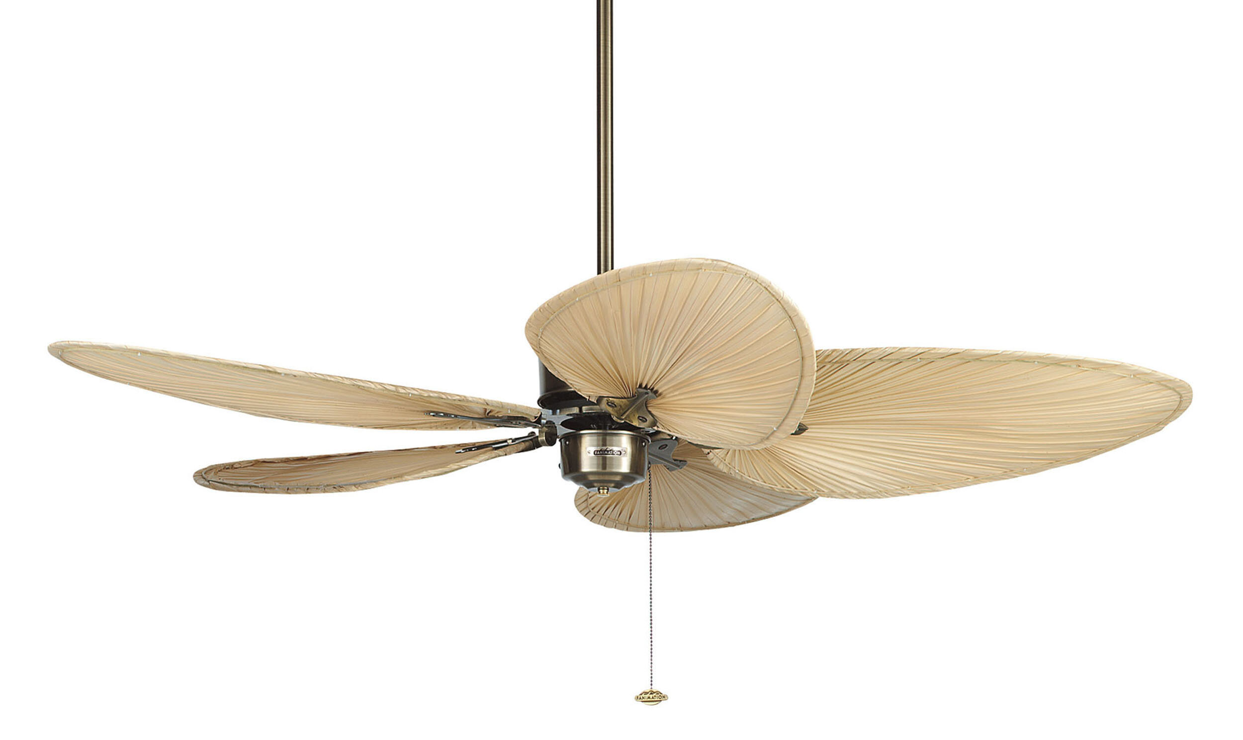 Fanimation Islander Leaf Blade Ceiling Fan With Pull Chain Reviews Wayfair