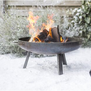 Ayden Steel Wood Burning Fire Pit By Sol 72 Outdoor