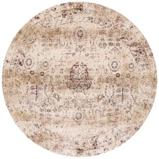 Zehner Ivory/Brown Area Rug by Bloomsbury Market