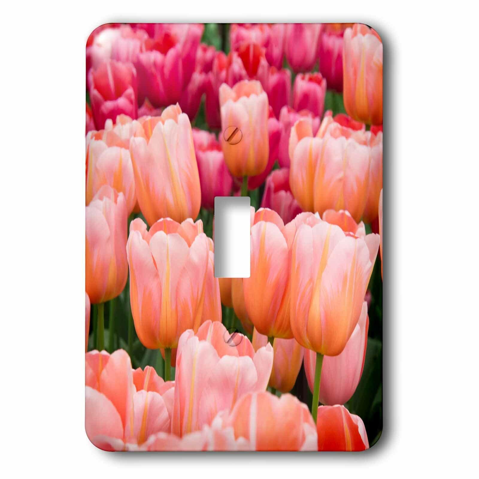 3drose Tulips 1 Gang Toggle Light Switch Wall Plate Wayfair