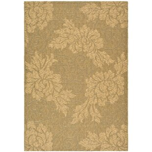 Laurel Gold/Natural Indoor/Outdoor Area Rug