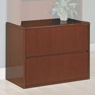 Latitude Run Jusino 2-Drawer File