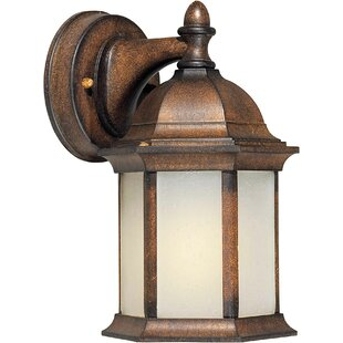 Bonomo 1-Light Outdoor Wall Lantern