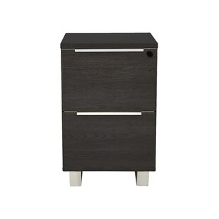 Afton 2-Drawer Vertical Filing Cabinet by Ebern Designs