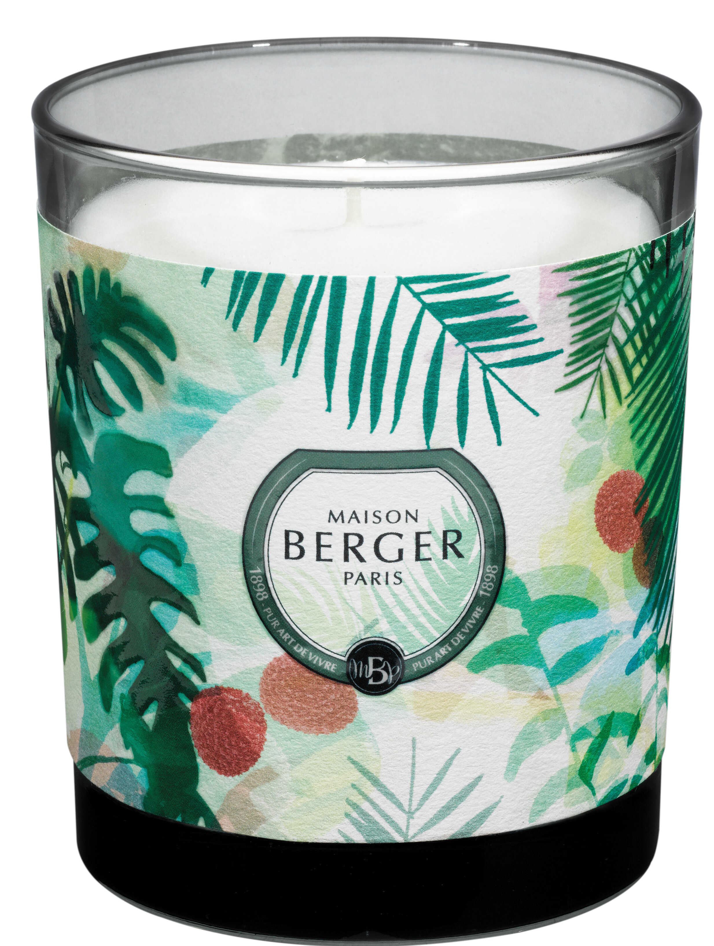 Maison Berger Candles You Ll Love In 2021 Wayfair